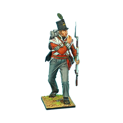 NAP0475 British 51st Light Infantry Regiment NCO