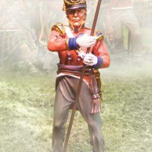 CS00560 - Foot Guards Kings Colours