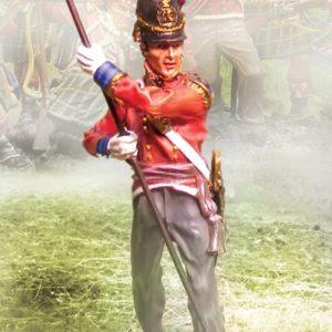 CS00561 - Foot Guards Regimental Colours