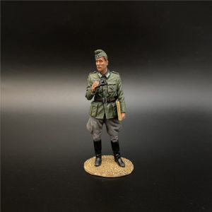 NO010 the Wehrmacht Colonel with a Cap