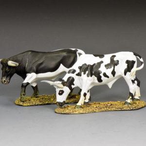 CD009 2 x Texas Longhorns #6
