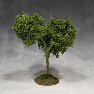 TRE003 Deciduous Tree