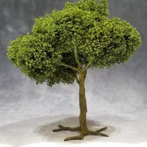 TRE004 Large Deciduous Tree