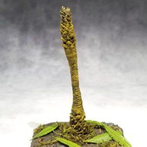 TRE010 Jungle Palm (Bare)