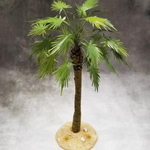 TRE005D Desert Sugar Palm Tree